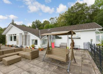 Thumbnail 4 bed bungalow for sale in Stuckenduff Road, Shandon, Helensburgh, Argyll & Bute