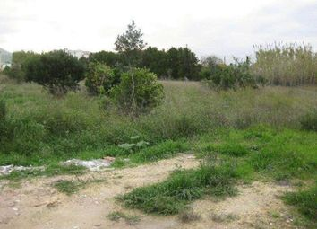 Thumbnail Land for sale in Oliva, Alicante, Spain