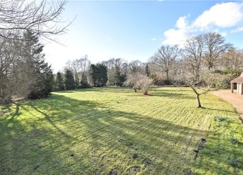 Thumbnail 4 bed bungalow for sale in Lucas Green, West End, Woking, Surrey