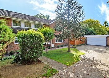 Thumbnail 4 bed detached house to rent in High Oaks, Crawley