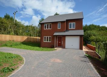 Thumbnail 4 bed detached house for sale in Hayne Court, Tiverton