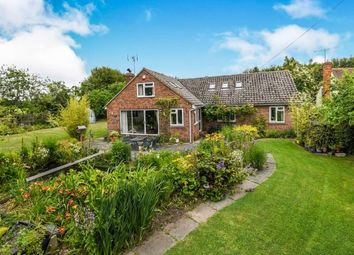 Thumbnail 4 bed detached house for sale in Lanham Green, Cressing, Braintree