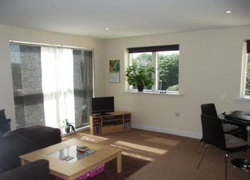 Thumbnail 2 bed flat to rent in St. Davids Hill, Exeter