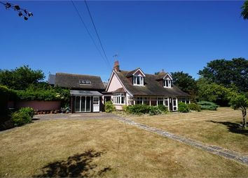 Thumbnail 4 bed detached house to rent in Seaview Avenue, West Mersea, Essex.