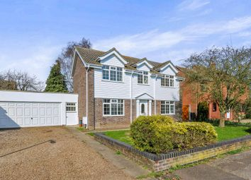 Thumbnail 4 bed detached house for sale in Woods End, Attleborough