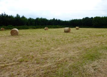 Thumbnail Land for sale in Eastwood End, Wimblington, March