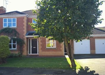 Thumbnail 4 bed detached house for sale in Mill Fleam, Hilton, Derby