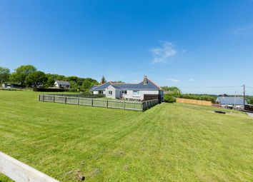 Thumbnail 6 bed detached bungalow for sale in New Road, Hook