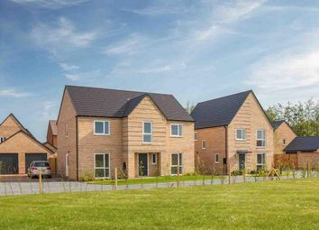 "4 bed detached house for sale in ""Winstone"" at Pedersen Way, Northstowe, Cambridge CB24"