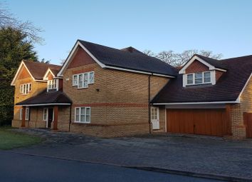 Thumbnail 5 bedroom detached house to rent in The Spinney, Gerrards Cross