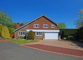 Thumbnail 4 bed detached house for sale in The Oaks, Hexham