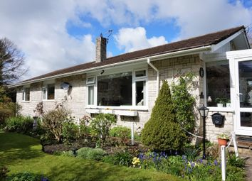 Thumbnail 4 bed detached bungalow for sale in Wills Lane, Cerne Abbas, Dorchester