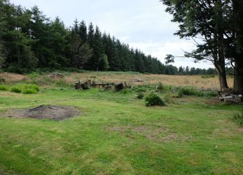 Thumbnail Property for sale in Evelix, Dornoch
