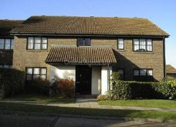 Thumbnail Studio to rent in The Oaks, Swanley, Kent.