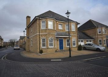Thumbnail 4 bed detached house to rent in Marshall Square, Southampton
