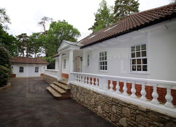 Thumbnail 4 bed detached house to rent in West Drive, Virginia Water