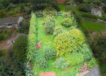 Thumbnail Land for sale in Little Birch, Hereford