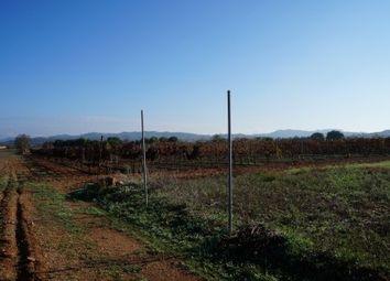 Thumbnail Land for sale in 07200 Felanitx, Balearic Islands, Spain