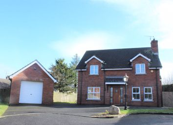 Thumbnail 4 bed detached house for sale in 23B Dunbrae, Chancellors Road, Newry