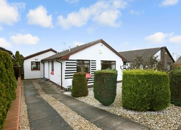 Thumbnail 3 bed bungalow for sale in Waterloo Place, Elphinstone