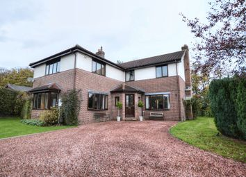 Thumbnail 5 bed detached house for sale in Low Chesters, Swarland, Morpeth
