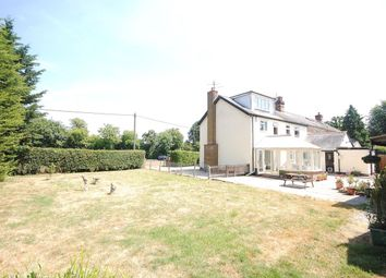 Thumbnail 4 bed semi-detached house for sale in Hall Green, Little Hallingbury, Bishop's Stortford