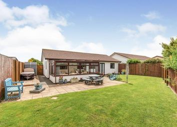 Thumbnail 4 bed bungalow for sale in St Merryn Holiday Village, Padstow, Cornwall