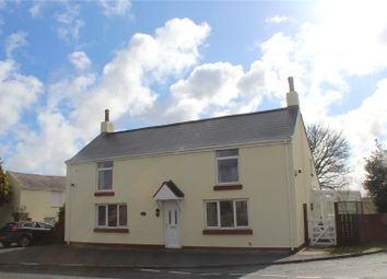 Thumbnail 4 bed detached house for sale in Salter's Lane End, Trimdon Station