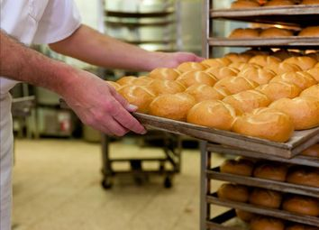 Thumbnail Leisure/hospitality for sale in Well Established Wholesale Bakery SR4, Tyne & Wear