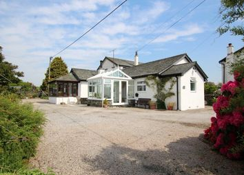 Thumbnail 3 bed detached bungalow for sale in Little Barn, Crook, Kendal, Cumbria