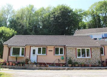Thumbnail 3 bedroom detached bungalow for sale in Golden Brake, Pembroke