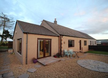 Thumbnail 3 bed bungalow for sale in Laurencekirk