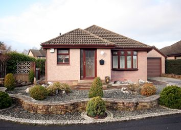 Thumbnail 3 bedroom bungalow for sale in 28 Beattock Wynd, Hamilton