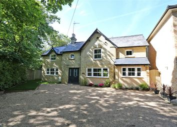 Thumbnail 3 bed detached house to rent in Elstead Road, Seale, Farnham