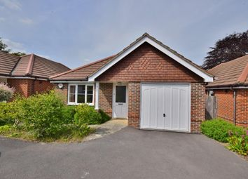 Thumbnail 2 bed bungalow for sale in Old Basing, Basingstoke