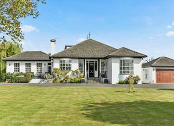 Thumbnail 4 bed detached house for sale in Hamm Court, Weybridge
