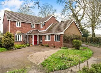 Thumbnail 4 bedroom detached house for sale in Norwich, Norfolk, .