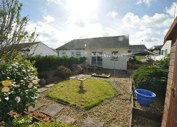 Thumbnail 2 bedroom semi-detached bungalow to rent in Church Way, Falmouth