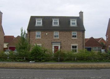 Thumbnail 5 bedroom detached house to rent in Wilkinson Drive, Kesgrave