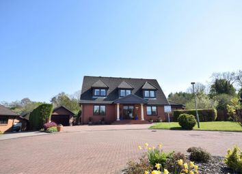 Thumbnail 5 bedroom property for sale in Chateau Grove, Barncluith, Hamilton