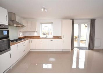 Thumbnail 4 bed property to rent in Arnold Drive, Priors Hall Park, Weldon