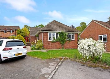 Thumbnail 3 bedroom bungalow to rent in Ridgeway Close, Hermitage, Thatcham