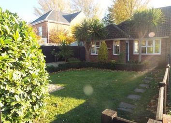 Thumbnail Bungalow for sale in Ettrick Close, Chichester, West Sussex