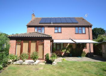 Thumbnail 4 bed property for sale in The Meadows, Thurton, Norwich