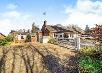 Thumbnail 4 bedroom bungalow for sale in Salhouse, Norwich, Norfolk