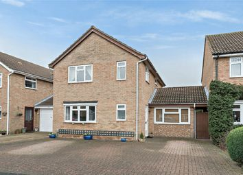 Thumbnail 4 bed detached house for sale in Douglas Road, Bedford
