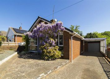 Thumbnail 3 bed bungalow for sale in Norse Way, Sedbury, Chepstow