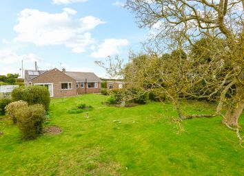 Thumbnail 3 bed detached bungalow for sale in Stone Street, Petham