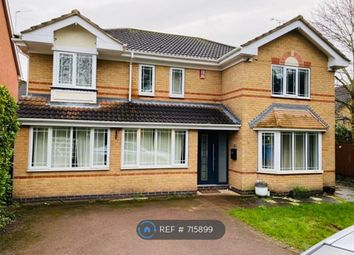 Thumbnail 5 bed detached house to rent in Callow Hill Way, Derby