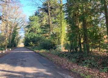 Land for sale in Pale Lane, Winchfield, Hampshire RG27